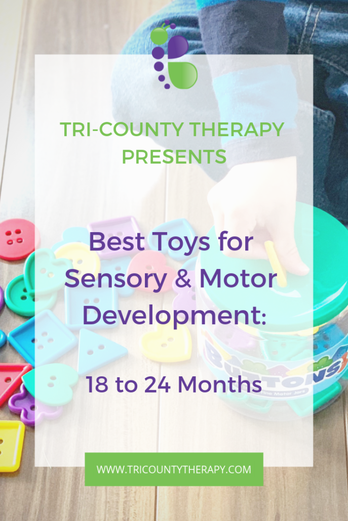 Sensory and Motor Toys: 18 to 24 Months