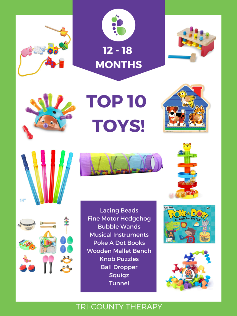 Top Toy Picks: 12-18 Months!