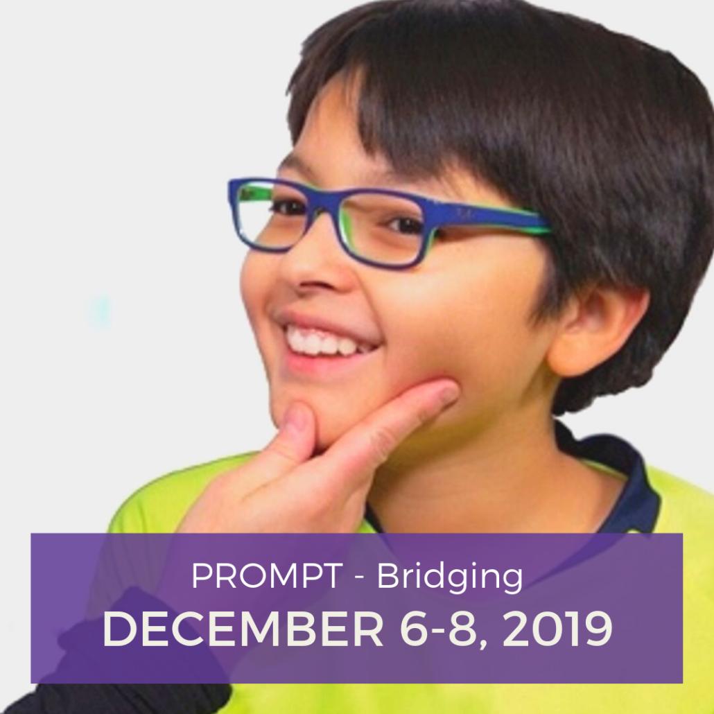 2019 PROMPT Bridging